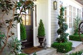 front-door-entry-ideas-boxwood_46bcc215eb6bdb7d7a8303b9be57b363_3x2_jpg_168x112_q85